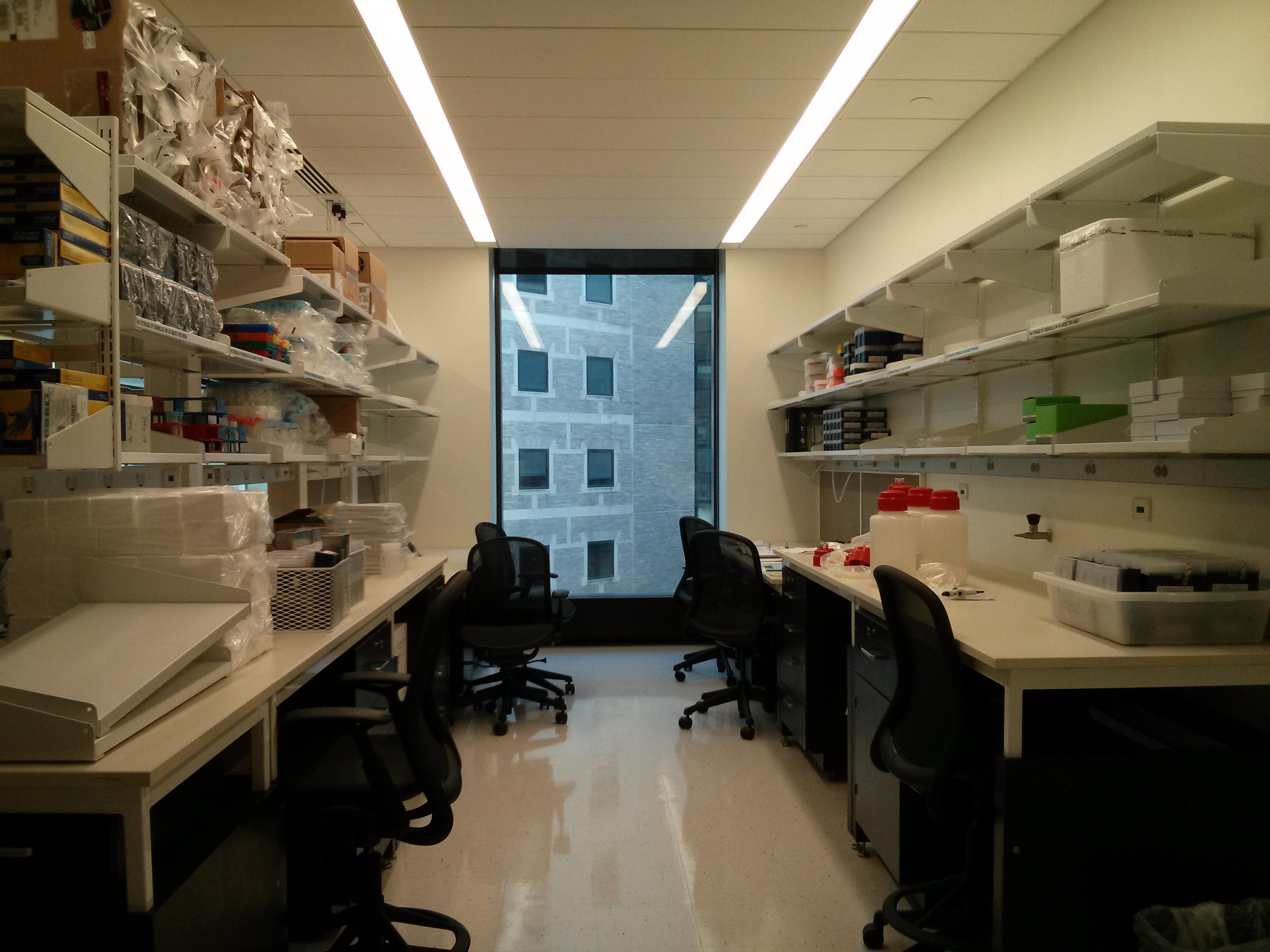Lab April 2013